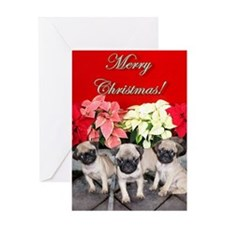 Merry Christmas pug puppies Greeting Card