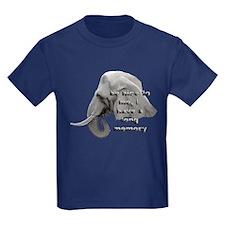 elephant memory T