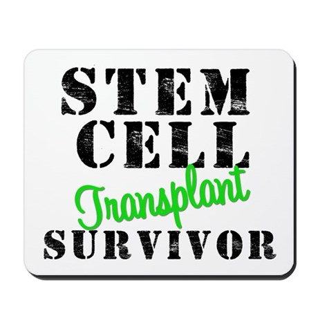 SCT Survivor Mousepad