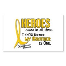 Heroes All Sizes 1 (Brother) Rectangle Decal
