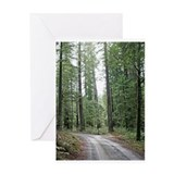 A drive through the Redwoods Greeting Card