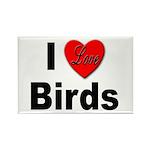 I Love Birds Rectangle Magnet (10 pack)