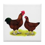 Red Broiler Chickens 2 Tile Coaster