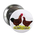 """Red Broiler Chickens 2 2.25"""" Button"""