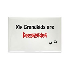 Kees Grandkids Rectangle Magnet