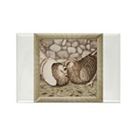 Stone Homer Pigeons Rectangle Magnet (100 pack)