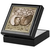 Stone Homer Pigeons Keepsake Box