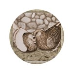 "Stone Homer Pigeons 3.5"" Button (100 pack)"