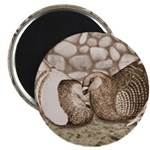 "Stone Homer Pigeons 2.25"" Magnet (100 pack)"