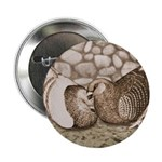 "Stone Homer Pigeons 2.25"" Button (100 pack)"