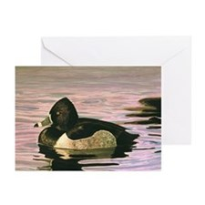 Funny Ducks unlimited Greeting Cards (Pk of 10)