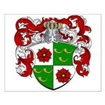 DeRoos Family Crest Small Poster