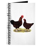 Dk Red Broiler Chickens Journal