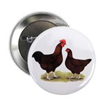 """Dk Red Broiler Chickens 2.25"""" Button"""