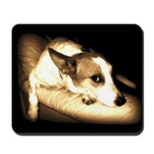 Cute Pet portrait Mousepad