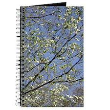 Dogwood and Blue Sky Journal