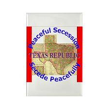 Texas-1 Rectangle Magnet