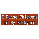 I Raise Chickens in my backyard Bumper Bumper Sticker