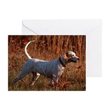 """Pointing Pointer B1"" Greeting Cards (Pk of 10"