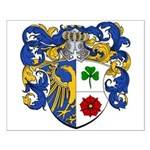 Haak Family Crest Small Poster