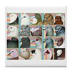 Twenty Pigeon Heads Tile Coaster