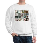 Twenty Pigeon Heads Sweatshirt
