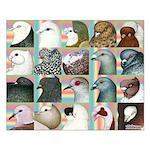 Twenty Pigeon Heads Small Poster