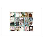 Twenty Pigeon Heads Large Poster