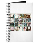 Twenty Pigeon Heads Journal