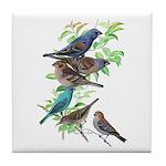 Grosbeaks & Buntings Tile Coaster