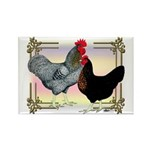 Black SL Chickens Rectangle Magnet