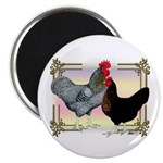 Black SL Chickens Magnet