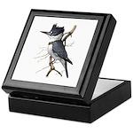 Fuertes' Kingfisher Keepsake Box