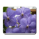 Funny Purple Mousepad