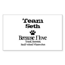 Team Seth Rectangle Sticker 50 pk)