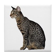 Savannah Cat Tile Coaster
