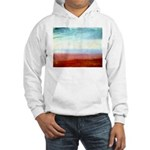 Colour Hooded Sweatshirt
