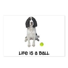 Springer Spaniel Life Postcards (Package of 8)