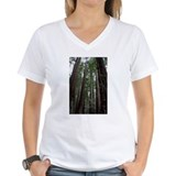 Muir Woods, California Shirt