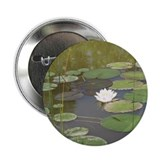 "Unique Pond 2.25"" Button (10 pack)"