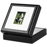 Cool Collie Keepsake Box