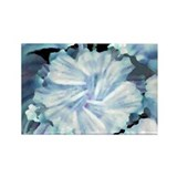 White Flower Abstract Rectangle Magnet (10 pack)