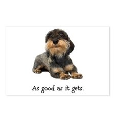 Good Wirehaired Dachshund Postcards (Package of 8)