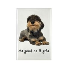 Good Wirehaired Dachshund Rectangle Magnet