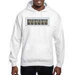 Cheetas Tri Hooded Sweatshirt