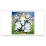 Owl Pigeons In Field Rectangle Sticker
