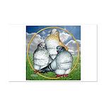 Owl Pigeons In Field Mini Poster Print