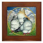 Owl Pigeons In Field Framed Tile