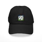 Owl Pigeons In Field Black Cap