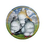 """Owl Pigeons In Field 3.5"""" Button"""